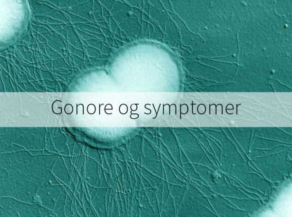 Tegn og symptomer på gonore | Selvsjekk