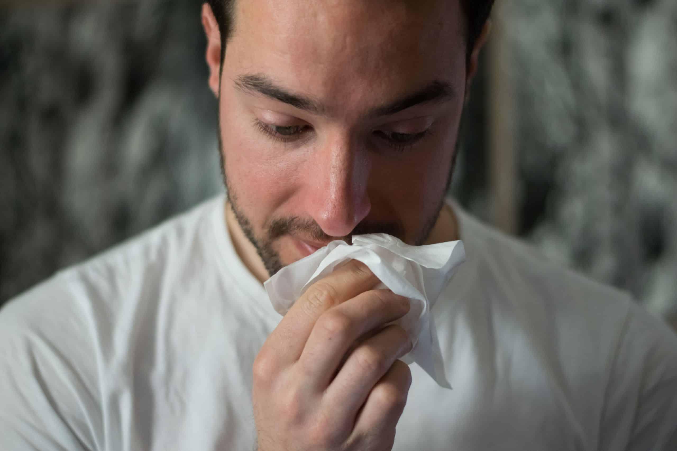 Alt du trenger å vite om pollenallergi